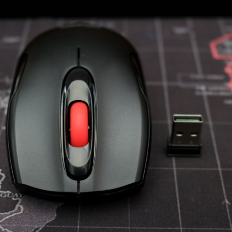 Mouse Newmen F266